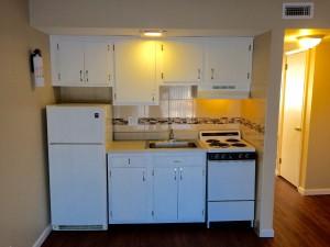 Kitchen Apt 15